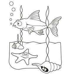 sea life coloring book vector image vector image