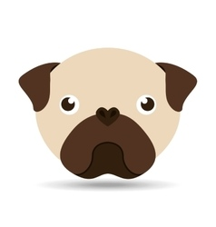 Lovely head puppy pug dog vector