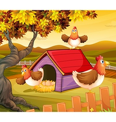 Three hens inside the fence vector