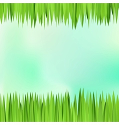 Background frame with realistic herbs vector