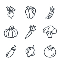 Fruit and vegetables icons linear style vector