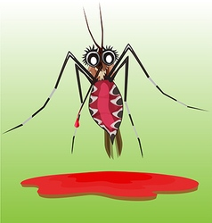 Common house mosquito vector
