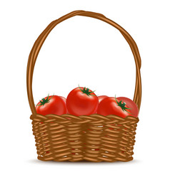 realistic detailed 3d basket with red ripe vector image vector image