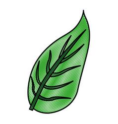 Color blurred stripe image green leaf with vector