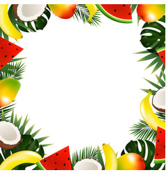 Tropical fruit frame vector