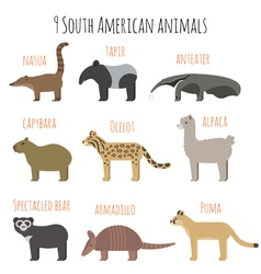 Set of south american animals icons vector