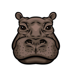 Hippo or african hippopotamus animal isolated icon vector