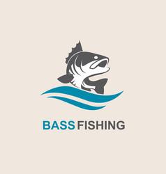 Bass fish icon vector