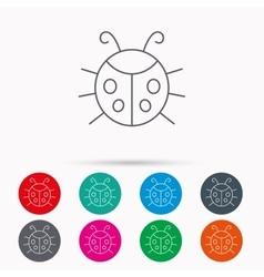 Ladybug icon Ladybird insect sign vector image