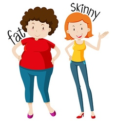 Opposite adjectives with fat and skinny vector