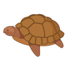 turtle icon cartoon style vector image