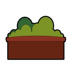 Bush in a pot vector