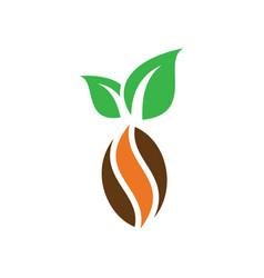 kakao chocolate logo image vector image vector image