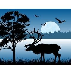 Reindeer beside lake vector image vector image