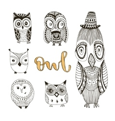 set of cute doodle owls Birds isolated vector image vector image