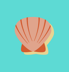 scallop sea shell sketch style realistic vector image