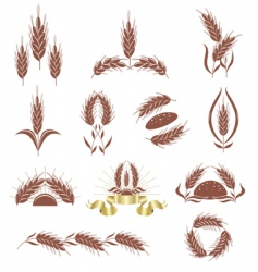 grain ears vector image