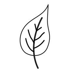 Sketch contour of simple leaf plant front view vector