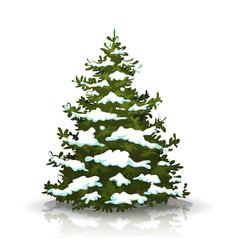 christmas pine tree with snow vector image
