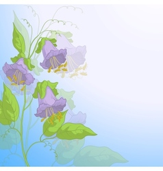 Flowers kobe and blue sky vector image