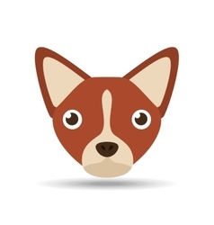 lovely head puppy dog chihuahua brown vector image vector image