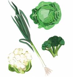 green vegetable vector image vector image