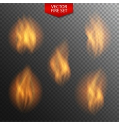 Naturalistic fire on dark transparent background vector