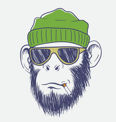 Cool monkey smoking a cigarette vector