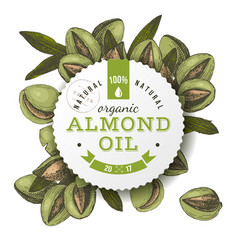 Organic almond oil emblem vector