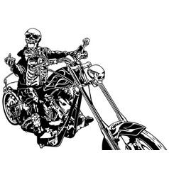 skeleton rider on chopper vector image vector image