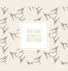 Tea leaves seamless pattern drawn organic vector