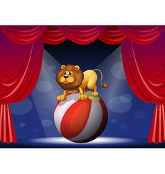 A lion performing at the circus vector image