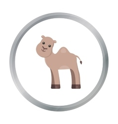 Camel cartoon icon for web and vector image vector image
