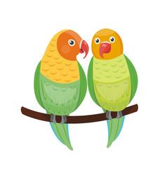 Cartoon tropical lovebird parrot wild animal bird vector
