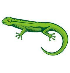 Green lizard vector