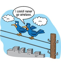Cartoon of two birds talking on a telephone wire vector
