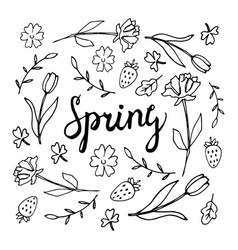 floral background spring theme greeting card vector image
