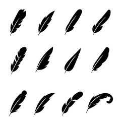 Feather black icons vector