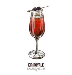 kir royale cocktail vector image vector image
