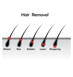 Hair removal background vector image