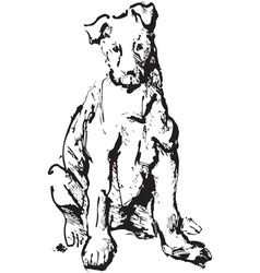 Ink sketch of dog - young terrier black and white vector