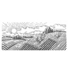 Spring rural landscape with two tractors in a vector