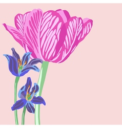 Floral background with tulip and scil vector