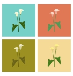 Assembly flat flower calla vector