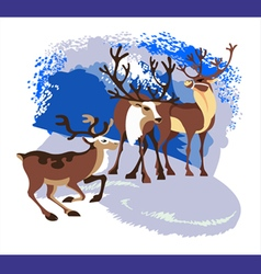 herd deer vector image