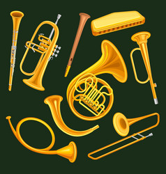 Set of woodwind and brass musical instruments vector