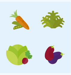 vegan food nature restaurant fruit vegetarian vector image