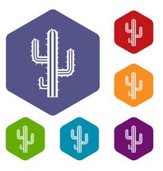 cactus icons set hexagon vector image