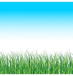 Grass landscape nature background with vector
