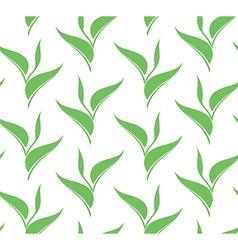 Green tea Seamless pattern vector image